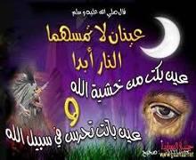 الشرطة النظام الإسلامي