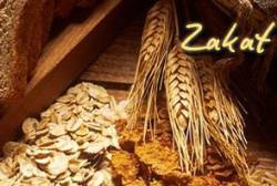 Zakah: Purity and Growth - II