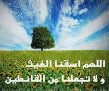 نزول المطر بدعاء خي ر الب شر موقع مقالات إسلام ويب