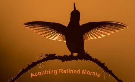 Means of Acquiring Refined Morals