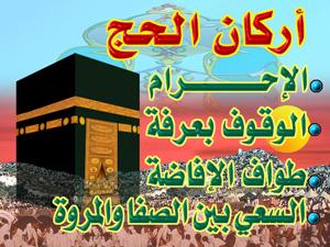 الدّرة الثمينة في الكلام على حكم العورة على مذهب الإمام مالك