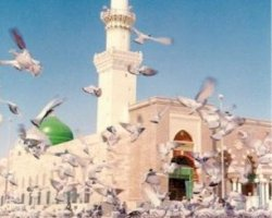 Greatest Glad Tidings for Pilgrims - I