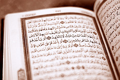 human rights in the quran