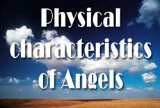 Physical characteristics of Angels- I - Islamweb.