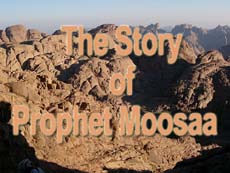 The story of Prophet Moosaa -II